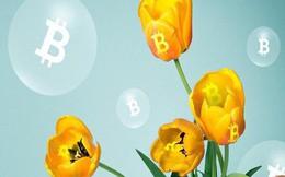 Bitcoin có thể chạm mốc 60.000 USD trong năm 2018 nhưng sẽ lại lao dốc một lần nữa