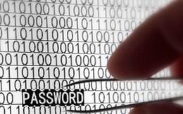 VNCERT: Lộ thông tin tài khoản, mật khẩu email của gần 438.000 người dùng Việt Nam