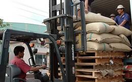 Cà phê Trung Quốc nhập mạnh vào Việt Nam
