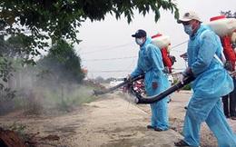 """Hóa chất phải phun theo cách này mới """"hạ gục"""" được muỗi Khỏe 360"""