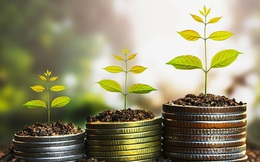 VCSC lạc quan dự báo tỷ suất sinh lời ROE của BIDV tốt hơn các ngân hàng khác