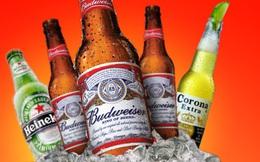 Dán tem lên bia: Người dùng có thể 'mất' thêm 2.000 tỷ mỗi năm