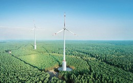 Đức: Khánh thành turbine điện gió lớn nhất thế giới dù dư thừa điện tới mức phải trả tiền để người dân sử dụng