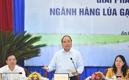 """Thủ tướng: """"Xâm thực"""" gạo của các nước vào Việt Nam mới đáng sợ"""