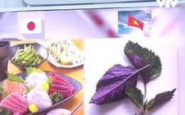 """Chuyện loại lá có sẵn """"trong vườn của mẹ"""" vừa được người Nhật """"cấp visa"""" và bài học cho nông sản Việt"""