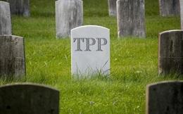 Bức tranh thương mại toàn cầu hậu TPP