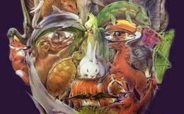 95% người không nhìn thấy tất cả con vật trốn trong bức ảnh, còn bạn thì sao?