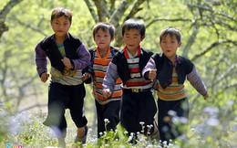 Dân số Việt Nam sẽ đạt mốc 100 triệu vào 2025