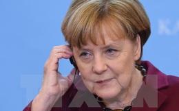 EU có thể khởi động đàm phán thương mại với nhiều nước khác thay Mỹ