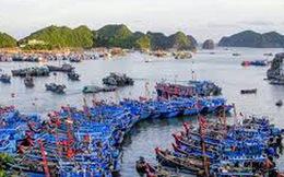 Không còn cảng cá Cát Bà trong quy hoạch đến 2020, định hướng 2030