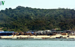 """Bồng bềnh nghề """"vớt vàng trắng"""" ở đảo Cô Tô"""