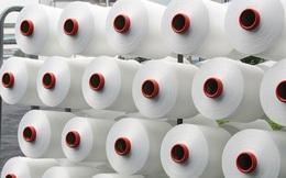 Ấn Độ điều tra chống bán phá giá sợi nylon từ Việt Nam