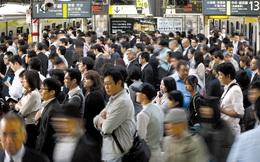 Nhật Bản: Nhọc nhằn giữ người tài