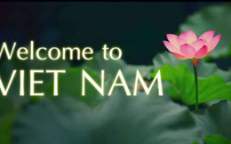 Cushman & Wakefield: Việt Nam là nền kinh tế xếp thứ hai thế giới về mức độ tiềm năng đối với các doanh nghiệp sản xuất