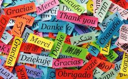 """Ngoài tiếng Anh, học ngôn ngữ nào khiến bạn trở nên """"nổi bật"""" nhất?"""