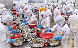 """Những sai lầm """"chết người"""" của doanh nghiệp Việt khi xuất khẩu thực phẩm sang Mỹ"""
