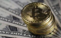 Công cụ đơn giản nhưng lại giúp dự đoán chính xác xu hướng giá bitcoin