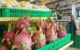 Bầu Đức thu siêu lợi nhuận từ trái cây: 1 đồng vốn 4 đồng doanh thu