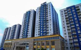 TP.HCM: Chỉ đạo khẩn giải quyết các vấn đề liên quan đến vụ cháy chung cư Carina
