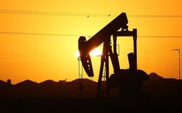"""Giá dầu đang đi vào """"vùng báo động đỏ"""""""