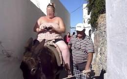Hy Lạp: Du khách nặng trên 1 tạ bị cấm cưỡi lừa vì gây nguy hiểm đến sức khỏe của chúng