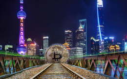 Người đàn ông Trung Quốc bị bắt vì ăn cắp điện để khai thác Bitcoin