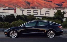 Con trai của ông trùm truyền thông Rupert Murdoch rộng đường trở thành chủ tịch Tesla thay Elon Musk