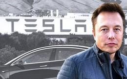 Scandal với Elon Musk còn chưa nguội, Tesla đã báo tin mừng: doanh số tại Mỹ lần đầu tiên vượt mặt Mercedes-Benz