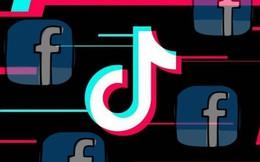 Facebook phát triển ứng dụng bắt chước TikTok
