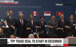 Đủ 6 nước thông qua, TPP có hiệu lực từ 30/12/2018