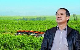 Lợi nhuận HAGL tăng vọt nhờ trái cây và bán vốn tại công ty con