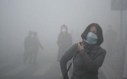 Viện Hàn lâm Khoa học Mỹ: Hít phải không khí ô nhiễm có thể làm giảm trí thông minh