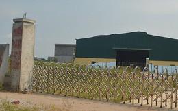 Bỏ 23 tỉ mua đất đấu giá rồi để… cỏ mọc