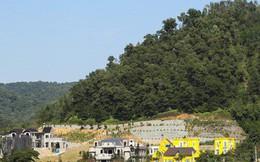 Vi phạm đất rừng Sóc Sơn: Cưỡng chế, thu hồi sổ đỏ