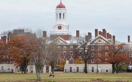 """""""Đột nhập"""" ký túc xá Harvard: Hóa ra sinh viên trường số 1 thế giới lại phải chịu cảnh sống chen chúc, chật chội như vậy"""