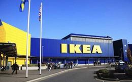 Ikea tái cấu trúc toàn bộ hoạt động kinh doanh, sa thải hơn 7.000 nhân viên