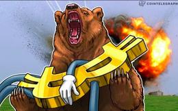 'Về cơ bản từ trước đến nay, Bitcoin không thay đổi gì'