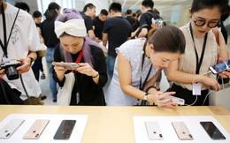 Dấu hiệu cho thấy iPhone sắp được lắp ráp tại Việt Nam
