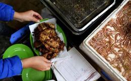 Món ngon mùa đông Hà Nội xuất hiện lung linh trên báo Pháp nhưng nhiều người vẫn không dám ăn vì lý do này