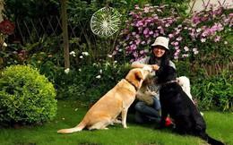 Tất bật nhiều năm tuổi trẻ, người phụ nữ tuổi 40 dành dụm tiền mua căn nhà vườn xinh xắn sống cuộc đời an yên