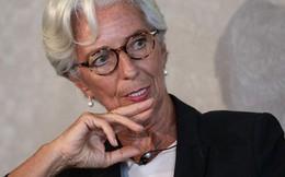 """Tổng giám đốc IMF: """"Sẽ đến lúc tiền ảo được chính phủ điều tiết"""""""