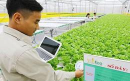 """""""Đại gia"""" Việt liên tiếp nhảy vào nông nghiệp công nghệ cao"""