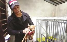 Chàng trai 8X đầu tư hàng trăm triệu đồng xây trạm cứu hộ chó, mèo bị bỏ rơi