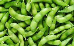 3 hiểu lầm tai hại về đậu nành bạn nên loại bỏ ngay từ bây giờ