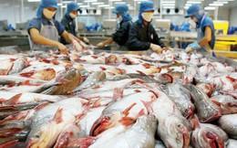 Việt Nam kiến nghị với WTO về việc Mỹ hạn chế nhập khẩu cá tra, cá basa