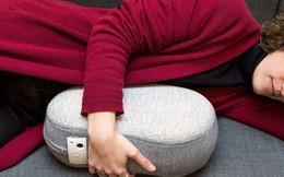 Nằm ôm chiếc gối trị giá 10 triệu này sẽ giúp bạn được trải nghiệm một giấc ngủ ngon chưa từng có