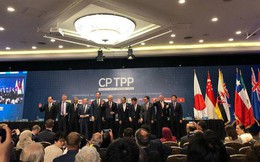 """WB: """"CPTPP góp tăng thêm 1,1% GDP cho Việt Nam"""""""