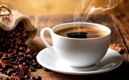 Mới kinh doanh cà phê: hãy tìm cách để tồn tại trước đã