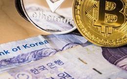 Hàn Quốc có thể sẽ dỡ bỏ lệnh cấm ICO vào cuối tháng này