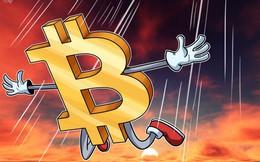 Bitcoin lại rơi vào downtrend: Thủng mốc 8.000 USD, xuống thấp nhất hơn 1 tháng qua